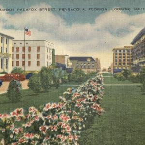 Pensacola, FL, Famous Palafox Street